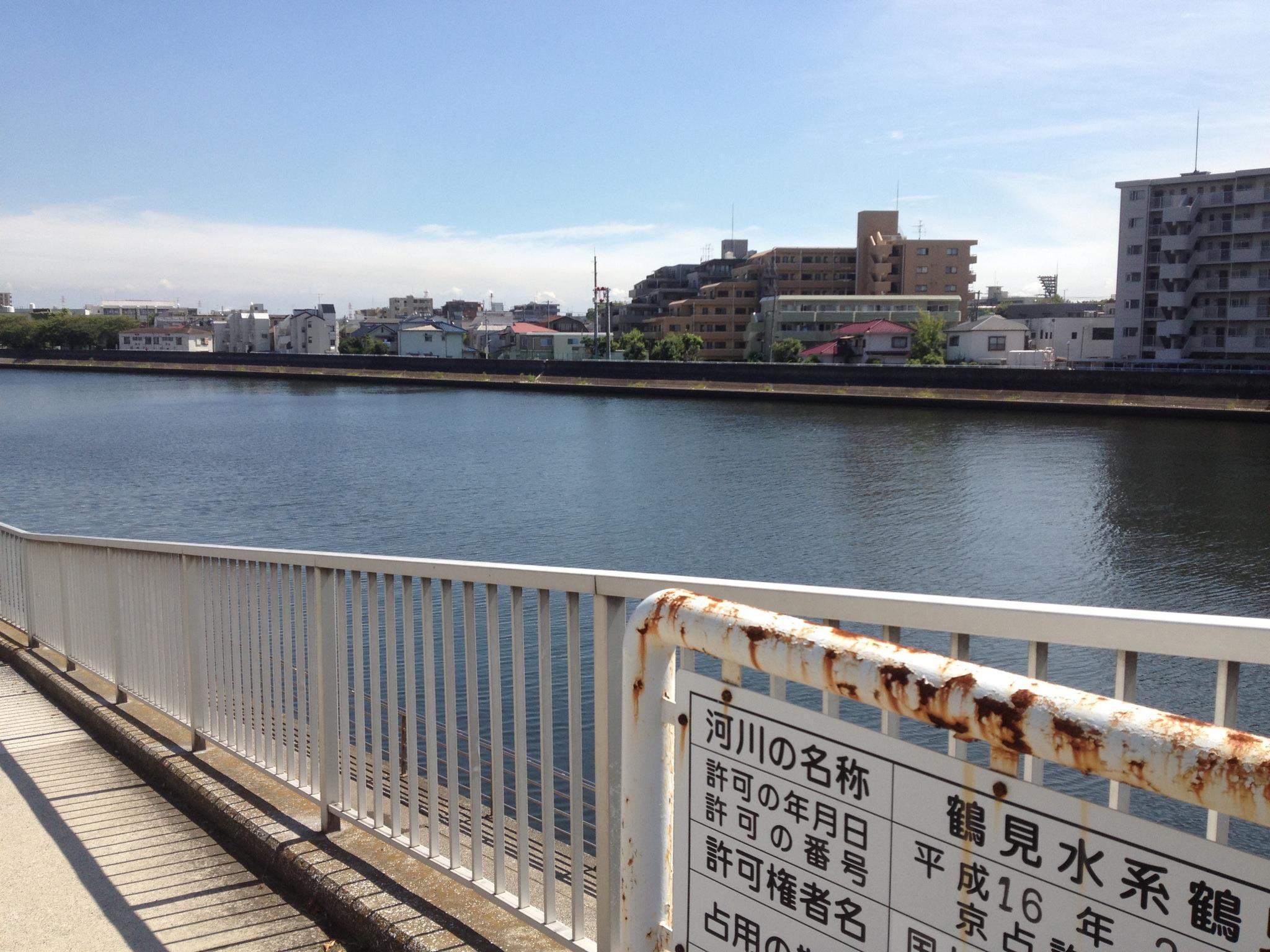 今日の鶴見川の様子