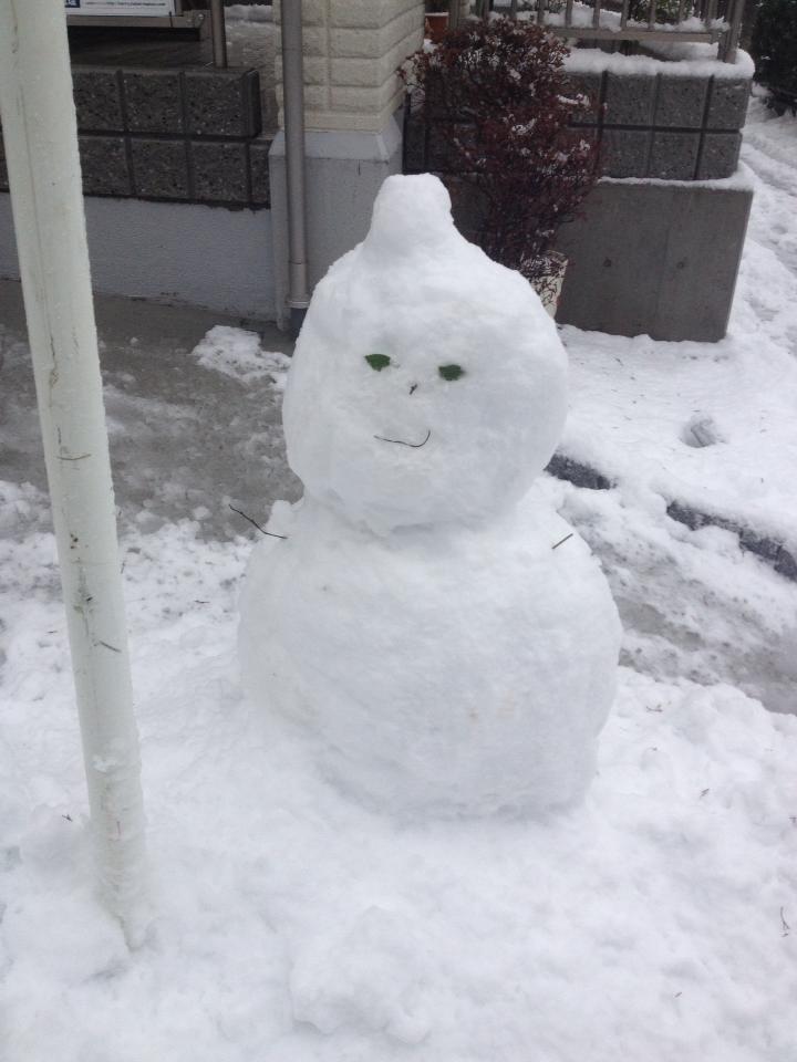 久々の大雪で雪だるまを作ってみました。