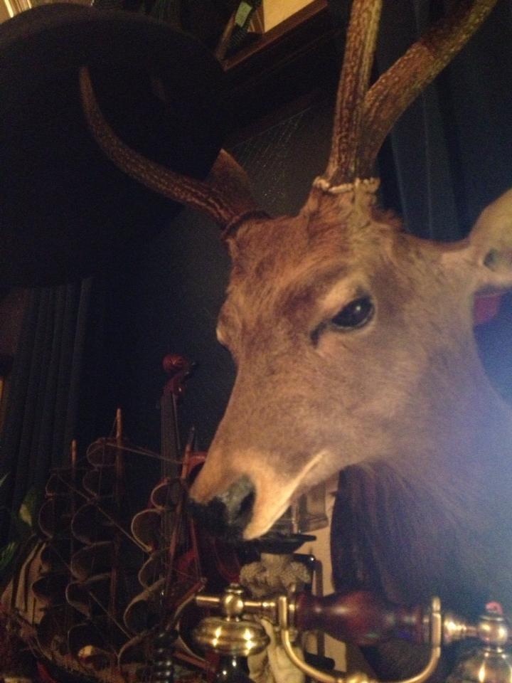 鹿の剥製:壁掛けインテリア