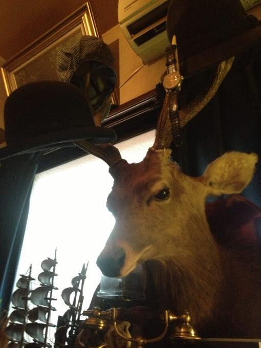 鹿の剥製。壁掛けインテリア。明るい光の差し込むカット