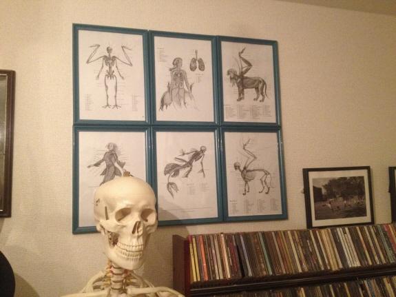 ヴンダーカンマー風壁掛けインテリア:安価で安易な額縁と幻獣の絵の紹介。なんとなくシャーロック・ホームズ風を目指し、100円ショップの額縁にプリントアウトしただけの幻獣の絵を合わせてみた。