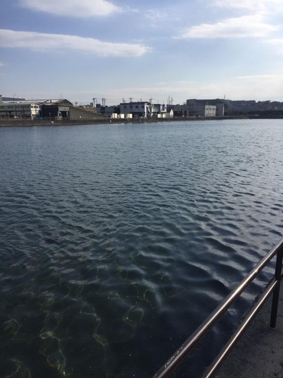 海に囲まれた野島公園